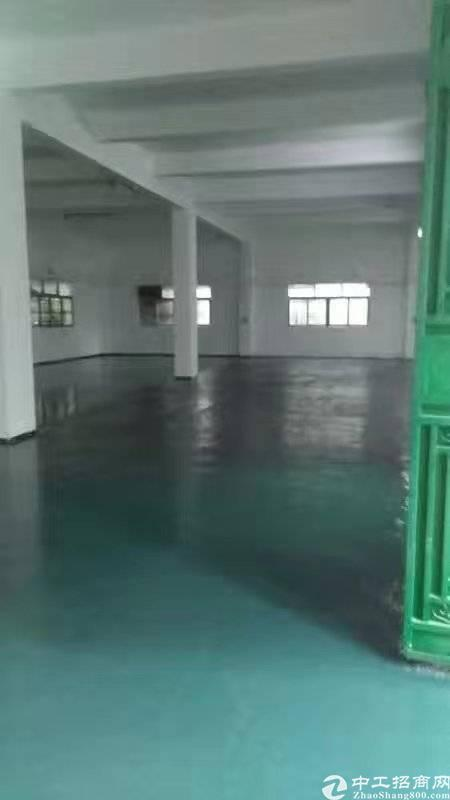 黄江精品独院4000方整租优惠