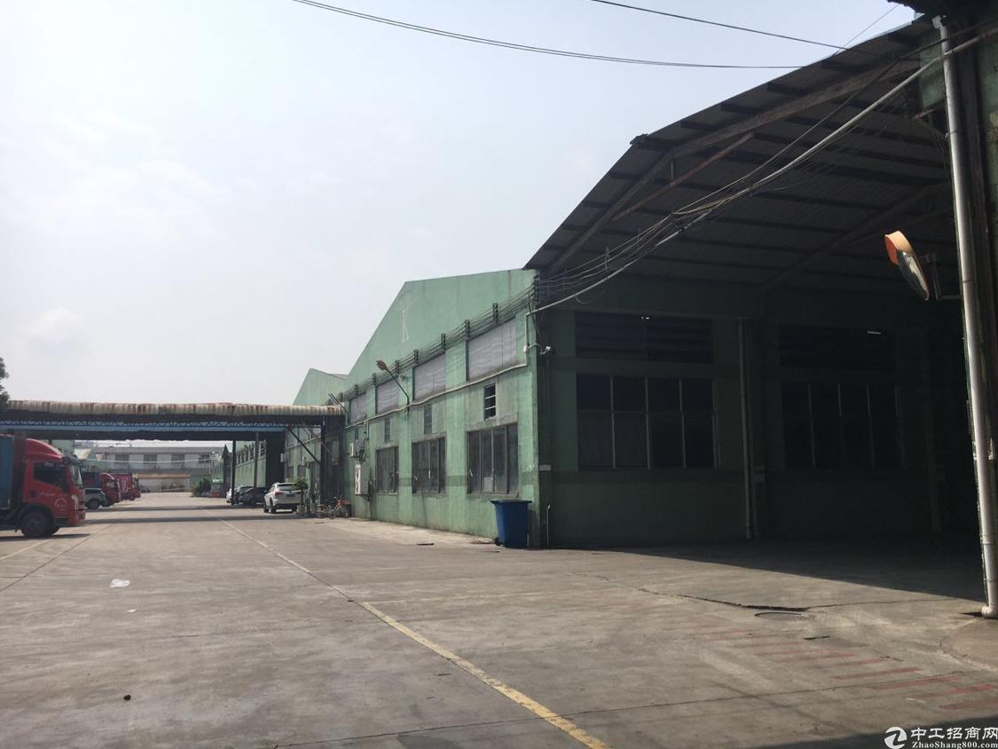 光明龙大高速出口红本钢结构厂房10800平方,高度9米