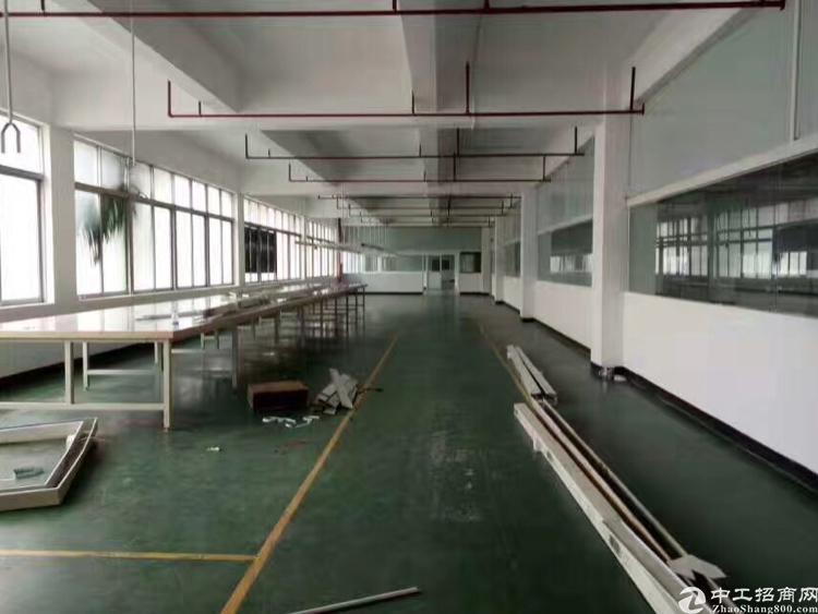 万江新出标准楼房1F1500平米,高5.5米,形象非常好
