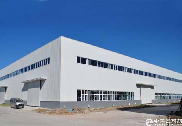 新圩经典小独院钢构厂房3600平方