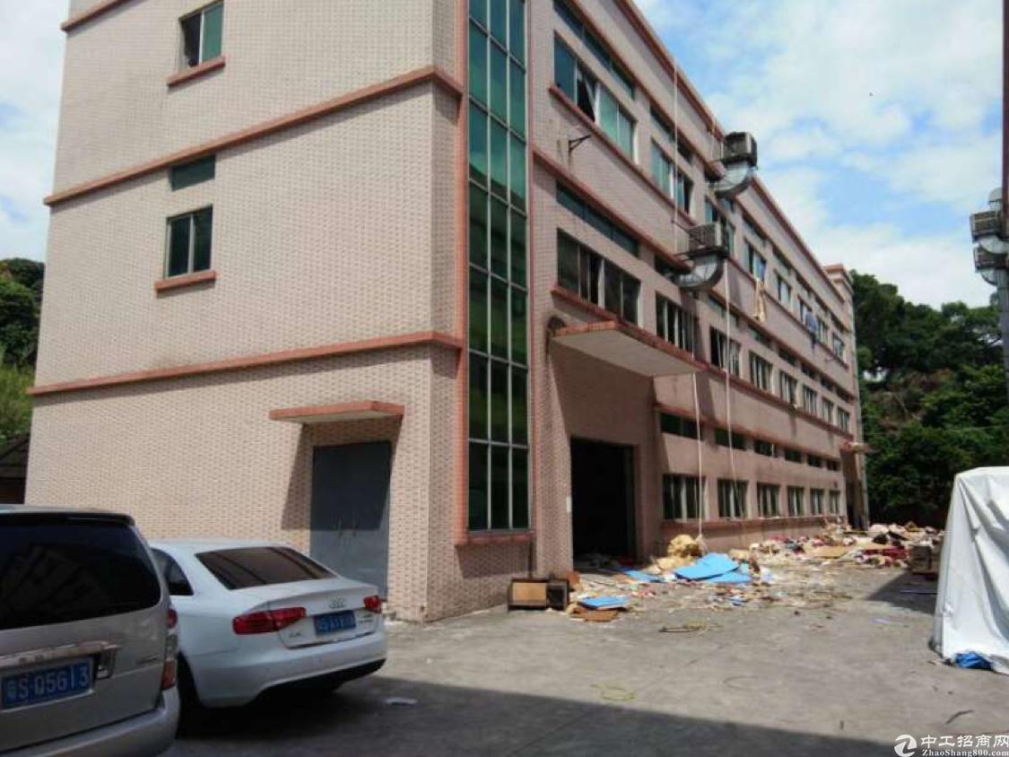 东莞塘厦厂房出租三层2400平方