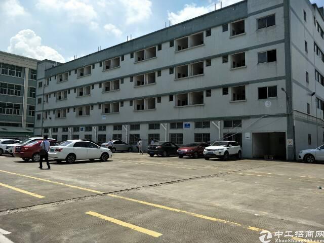 工业园一楼厂房分租-图2