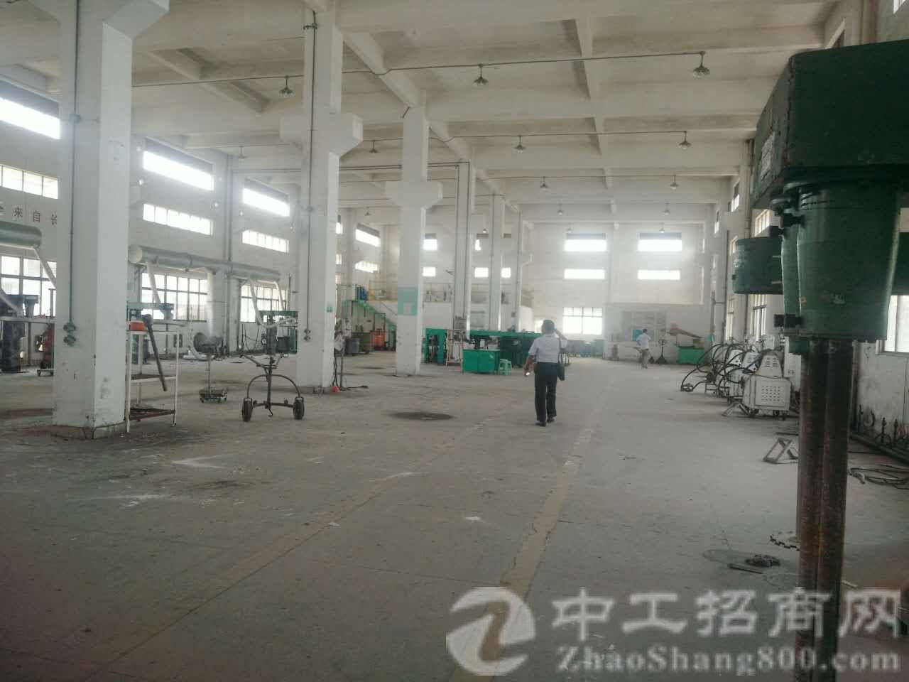 塘厦镇沙湖新出标准单一层厂房31000平米,可分租