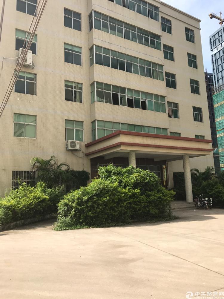 横岗街道新出精装修花园式园区办公室450平