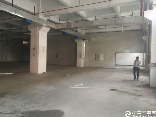 公明龙大高速出口处新出高大尚独院厂房20000平米-图6