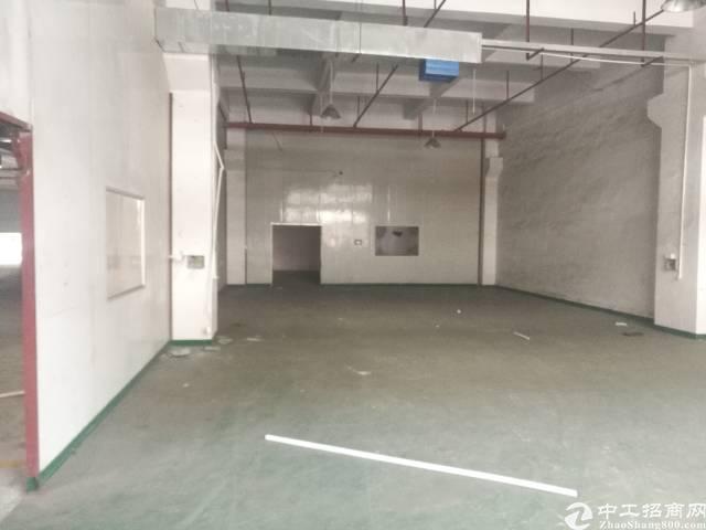 公明龙大高速出口处新出高大尚独院厂房20000平米-图5