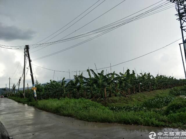 惠州国有土地出售