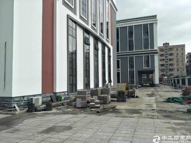 坪山新区汤坑社区主干道旁400平米办公室招租