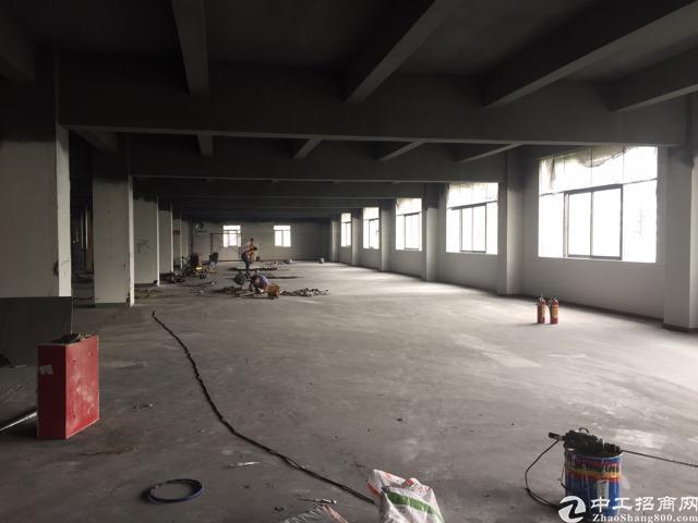 西丽大学城地铁口500米 厂改写字楼1200平大小可分租