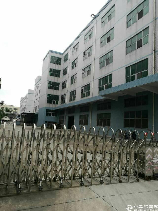 公明新出楼上带精装修厂房4320平