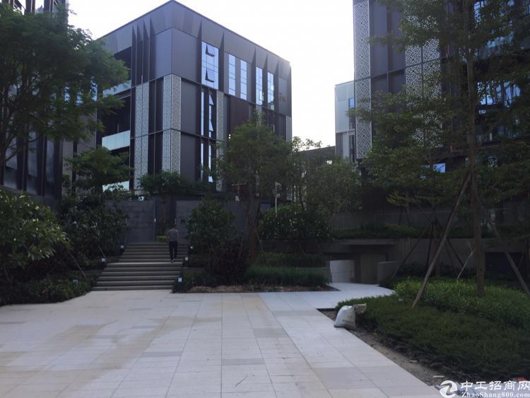 龙岗中心城505平精品甲级写字楼红本在手业主直租