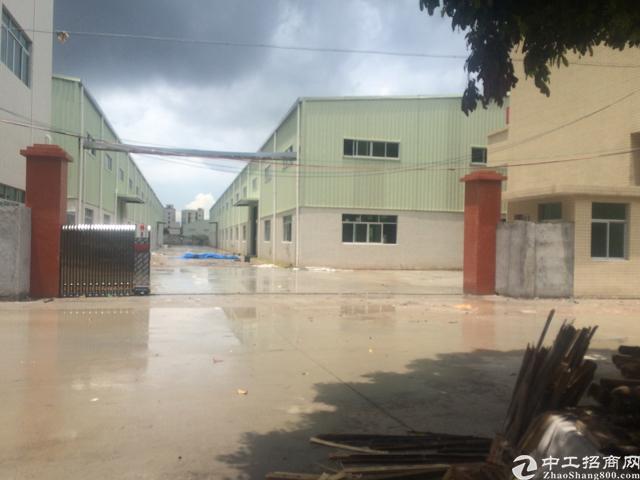 沙田齐齐沙派出所附近新出全新单一层钢构独门独院厂房3800平