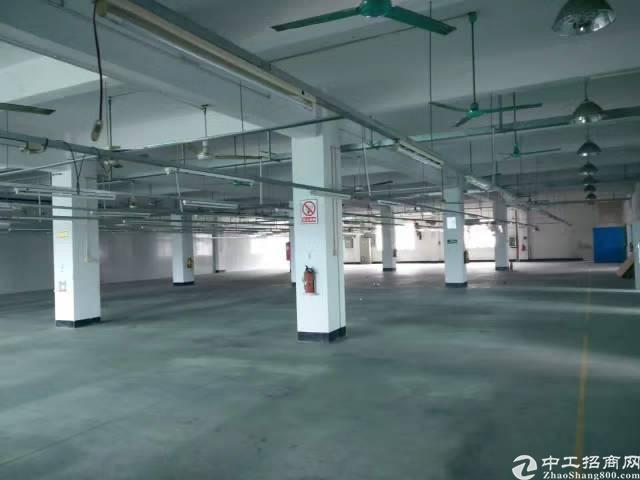 黄江鸡啼岗村1680平方二楼厂房出租