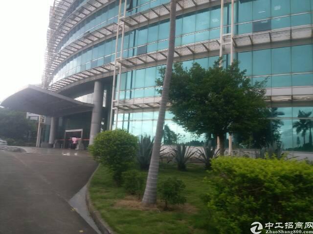 石岩 办公贸易厂房300平至800平带装修招租