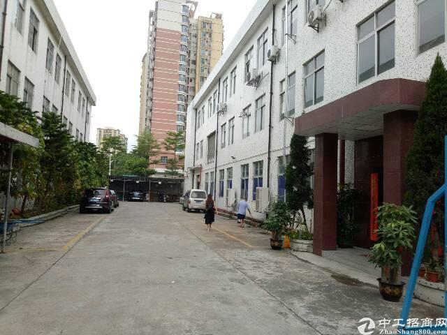 福永107国道边独院1-3层3600平方工业厂房出租-图2