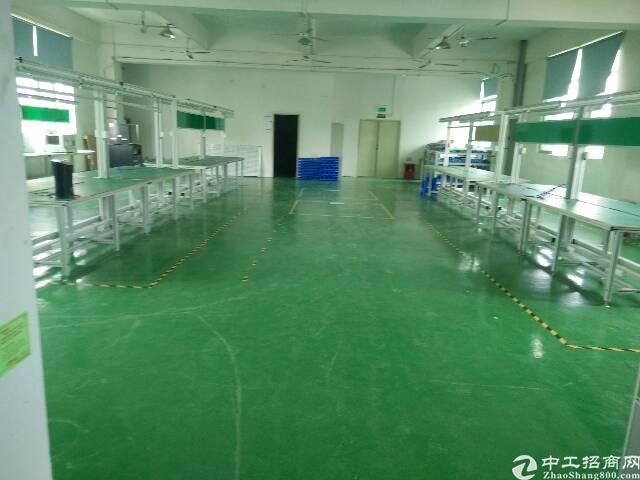 观澜带装修厂房出租1000平米
