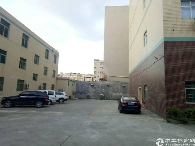 观澜松元新出原房东一楼整层1200平方出租-图4