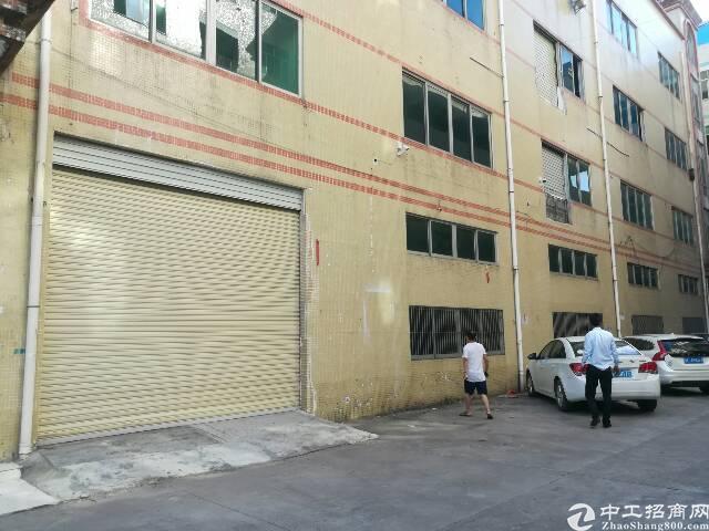 布吉一楼厂房月底空出1100平,水电现成,原装不动