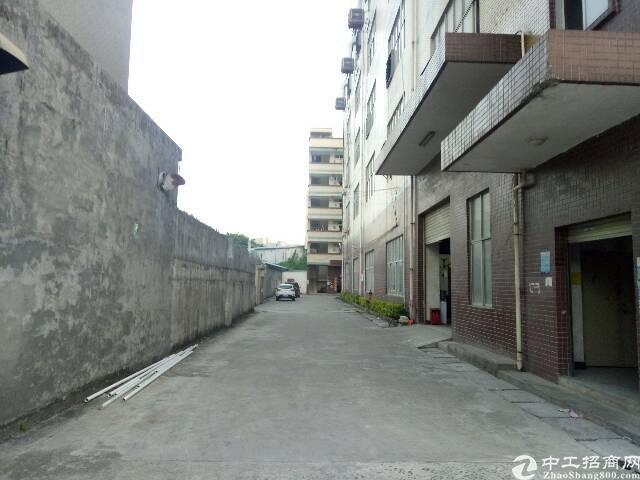观澜松元新出原房东一楼整层1200平方出租-图2