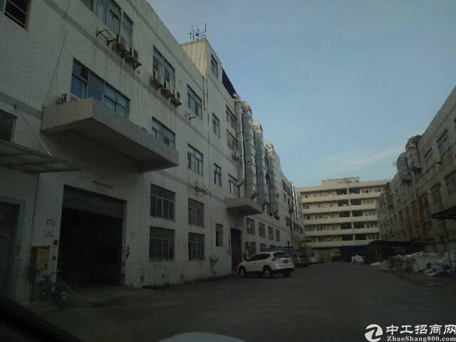 厚街镇陈屋村新出一楼标准厂房1100平方米