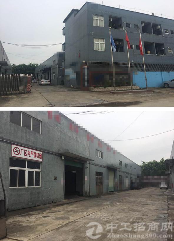 惠州石湾小独院厂房低价出售