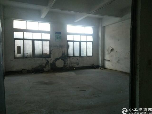 黄江镇长龙村原房东标准厂房