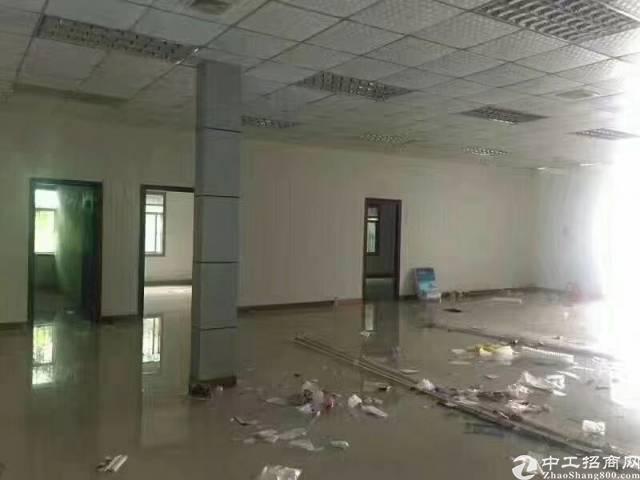 黄江镇中心新出带无尘车间小独院2950平