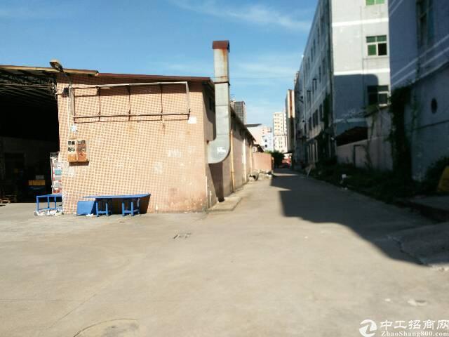 厦边单一层1900平方仓库出租,-图5