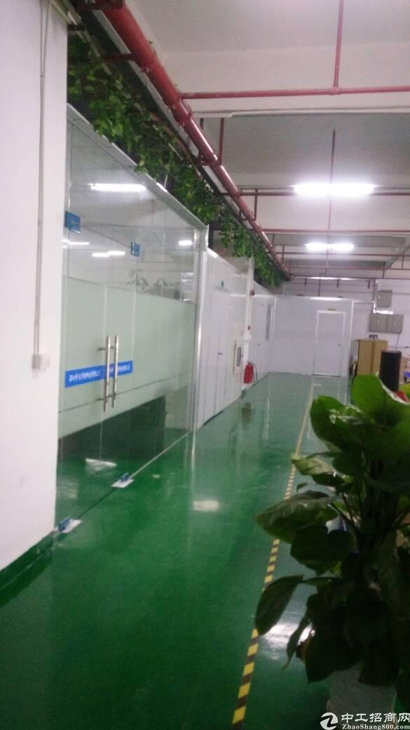 光明新出楼上精装修厂房1200平-图2