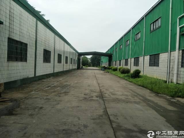 广州江门江海国家级高新区500亩土地出租