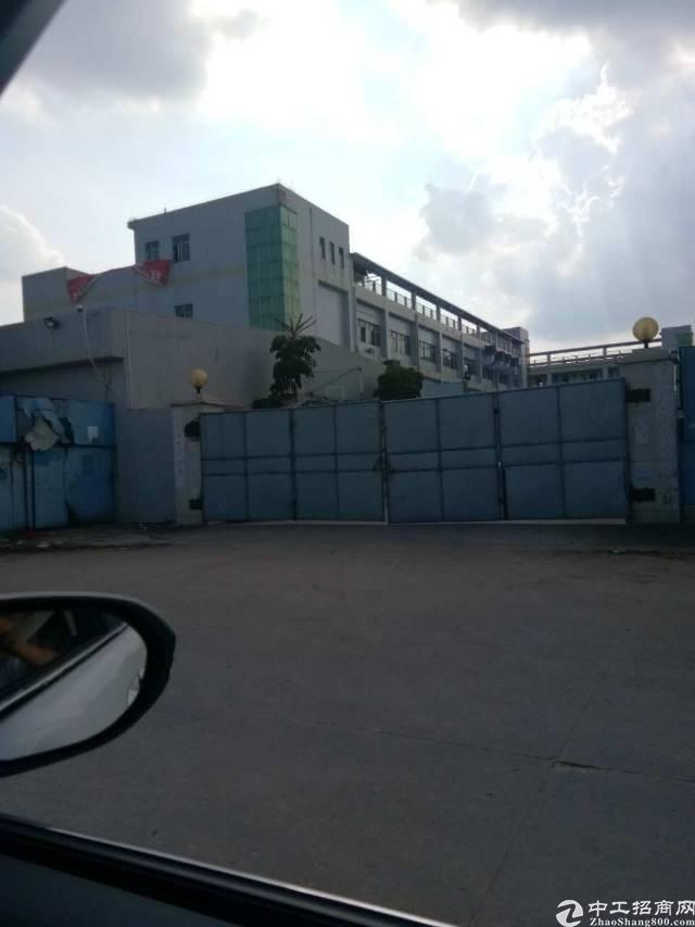 石碣东部工业区新出独院单一层厂房13000平米