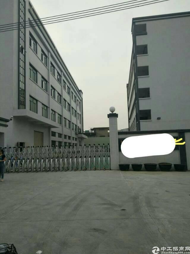 东莞市石排镇总建筑面积6300平米,厂房1-3F4500平米