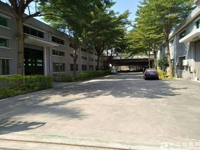横沥镇单一层独院厂房3000平方,宿舍500平方,电250千