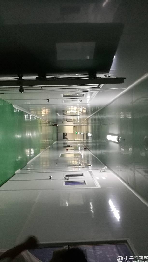 光明楼上带装修,千级无尘车间1300平-图4
