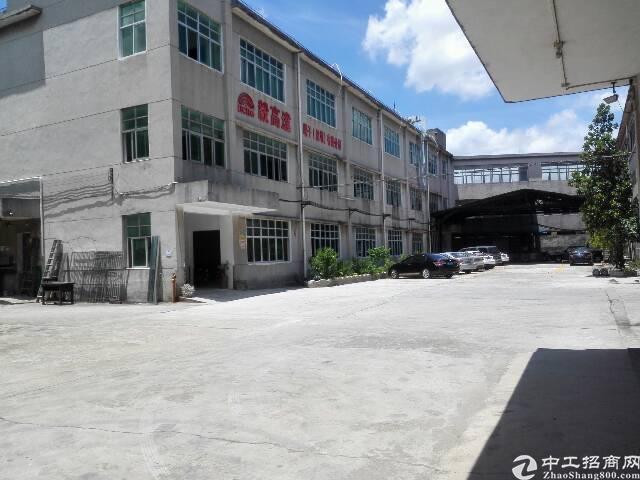 观澜高速口大布巷原房东一楼800招租