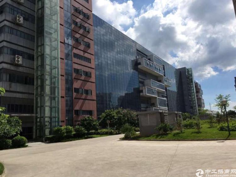 松岗镇中心精装修大小面积写字楼招租500平方100平方