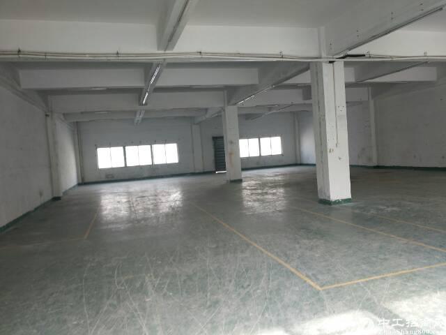 石岩北环豪华装修整层1788平方厂房出租-图5
