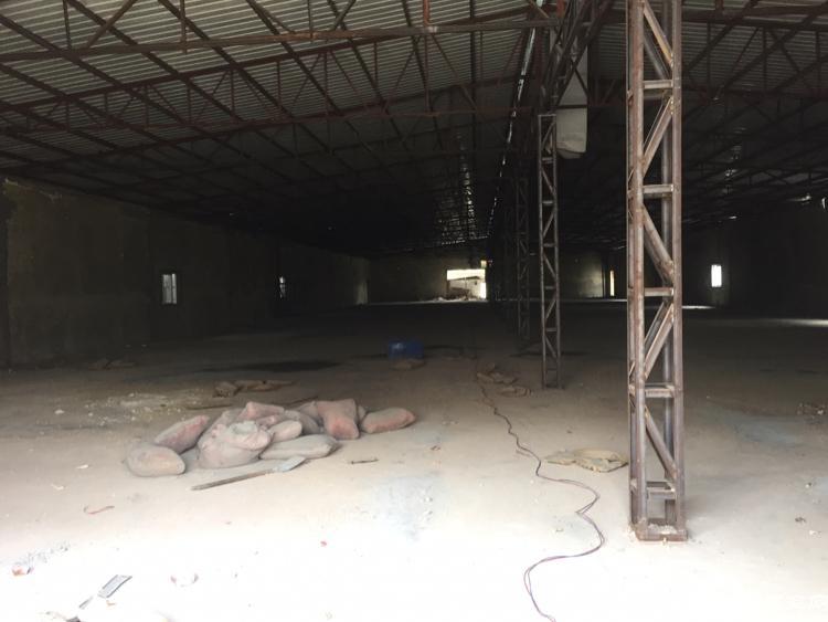塘厦大坪出口500处新出钢构厂房20000平米大小可分租