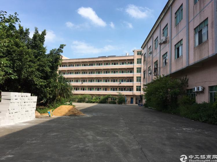 三屯村新空出一楼带牛角的标准厂房900平方米