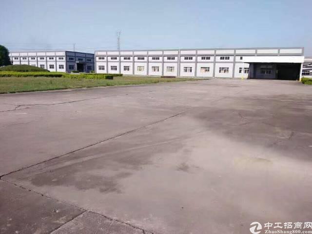 星光村形象超好超高单一层标准厂房8500方