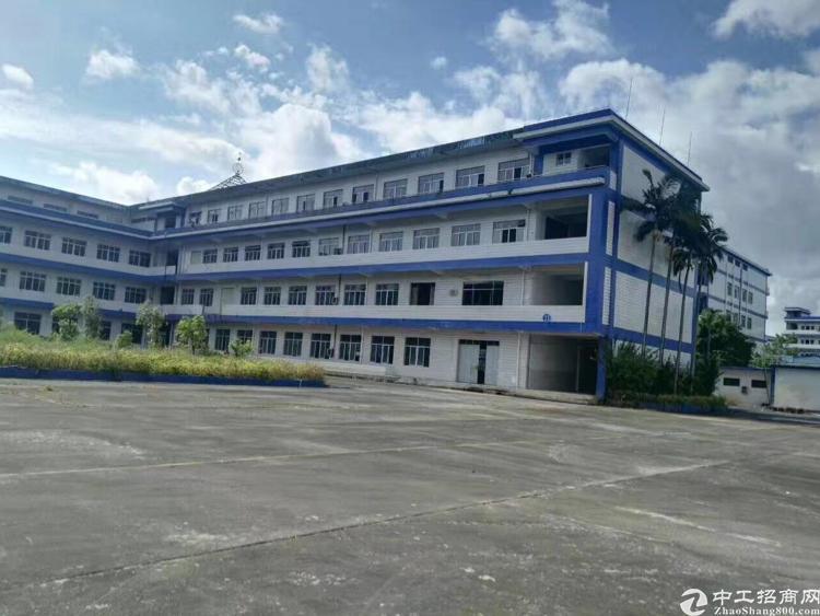 惠东多祝红本厂房45680平米分租9块一平米