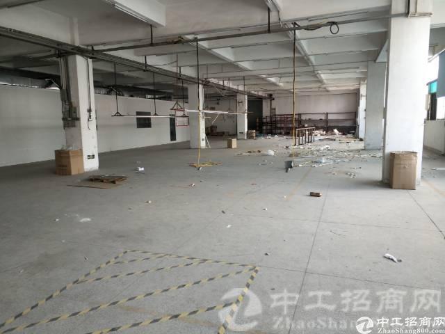 东城新出标准厂房一楼2500平方低价出租