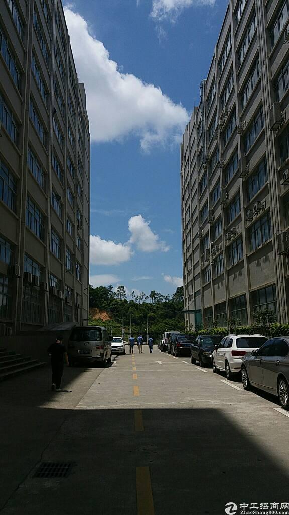 机荷高速出口,原房东楼上5000平豪华装修厂房,大小可分