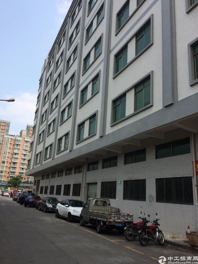 塘厦镇中心区域独户商业楼5000平米火爆招商中