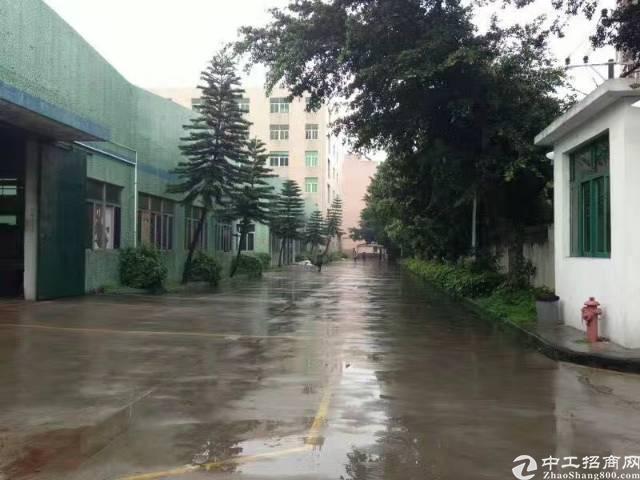 西乡九围新村钢钩厂房10000平米大小可分租-图3