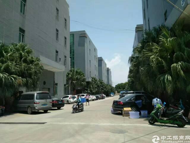 福永4万平方厂房有红本大小可分租