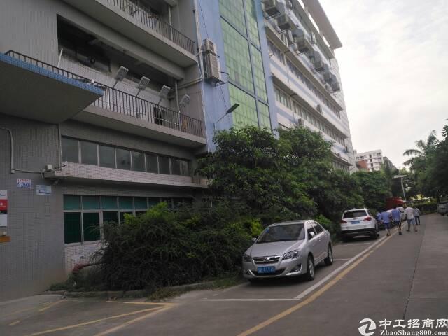 福永沿江高速出口附近大型工业园区独栋厂房出租