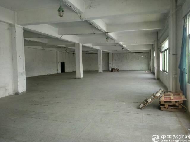 福永新和一楼1000平方适合做设备组装仓库-图4
