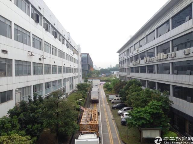 龙岗宝龙高新产业园厂房一二楼共8000平方招租