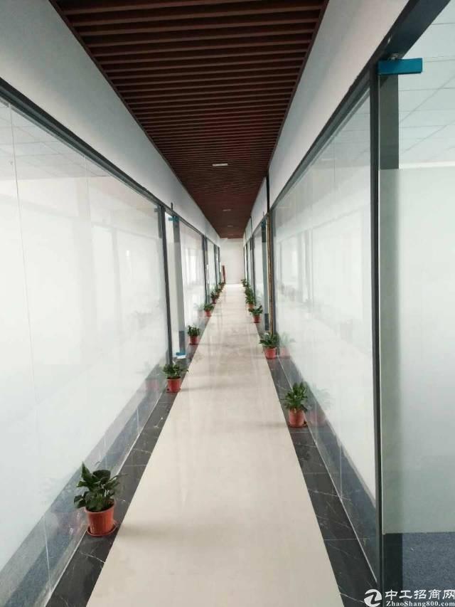 龙华清湖地铁站旁,精装修写字楼96平招租
